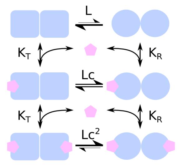 MWC reaction scheme